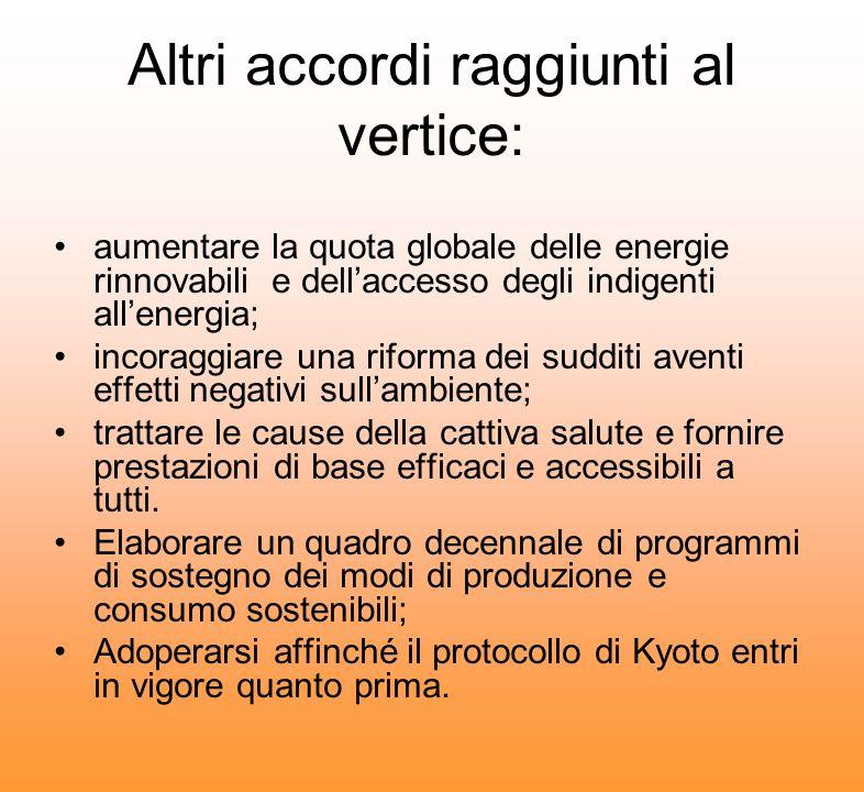 Altri accordi raggiunti al vertice: aumentare la quota globale delle energie rinnovabili e dellaccesso degli indigenti allenergia; incoraggiare una ri