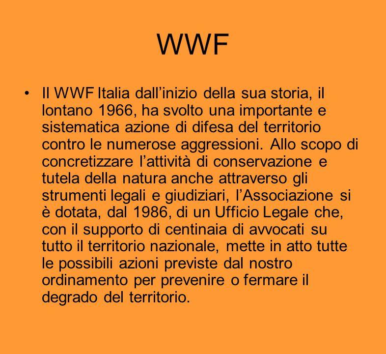 WWF Il WWF Italia dallinizio della sua storia, il lontano 1966, ha svolto una importante e sistematica azione di difesa del territorio contro le numer