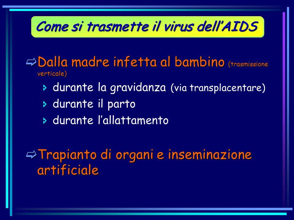 Dalla madre infetta al bambino (trasmissione verticale) Dalla madre infetta al bambino (trasmissione verticale) durante la gravidanza (via transplacen