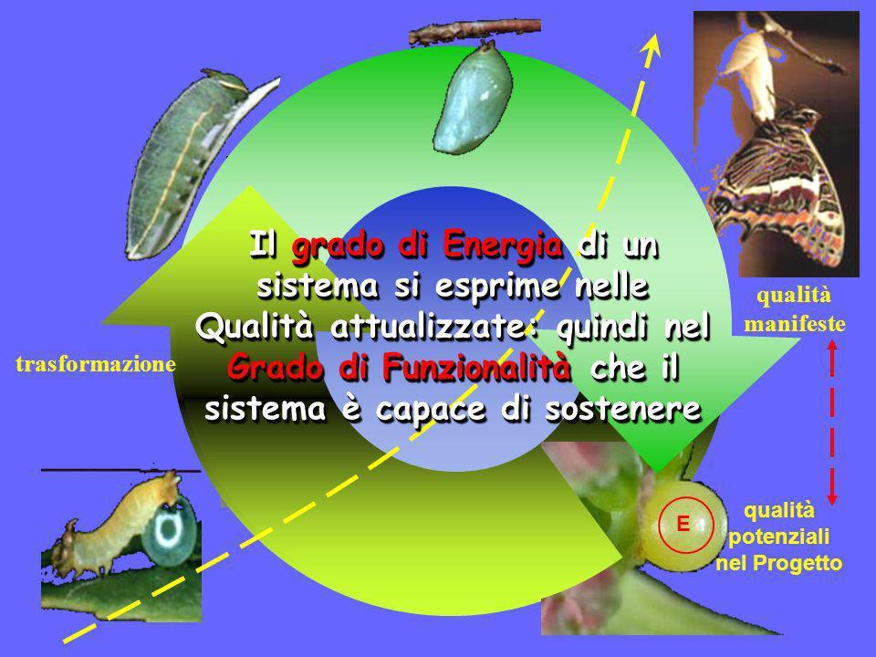 the Creative Thinking Project ® www.ctp-org.net - info@ctp-org.net Salute e Progetto Creativo Ricerca e Comunicazione Energia Struttura e Funzioni sostengono lObiettivo La Comunicazione produce Coesione Comunicazione e Coesione sostengono lIntegrazione Un sistema (es.
