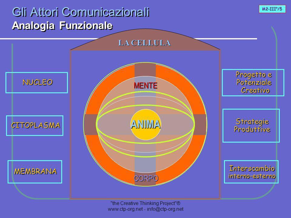 the Creative Thinking Project ® www.ctp-org.net - info@ctp-org.net Il Progetto nellEssere Umano Interazione Comunicazionale LA-Anima motiva alla ricerca di Energia LA-Mente accoglie la motivazione e la trasforma in Strategie LA-Corpo accoglie le strategie e le trasforma in Azione Consapevole E A seconda della tappa di sviluppo di un individuo, ciascun Attore svolge un ruolo predominante.