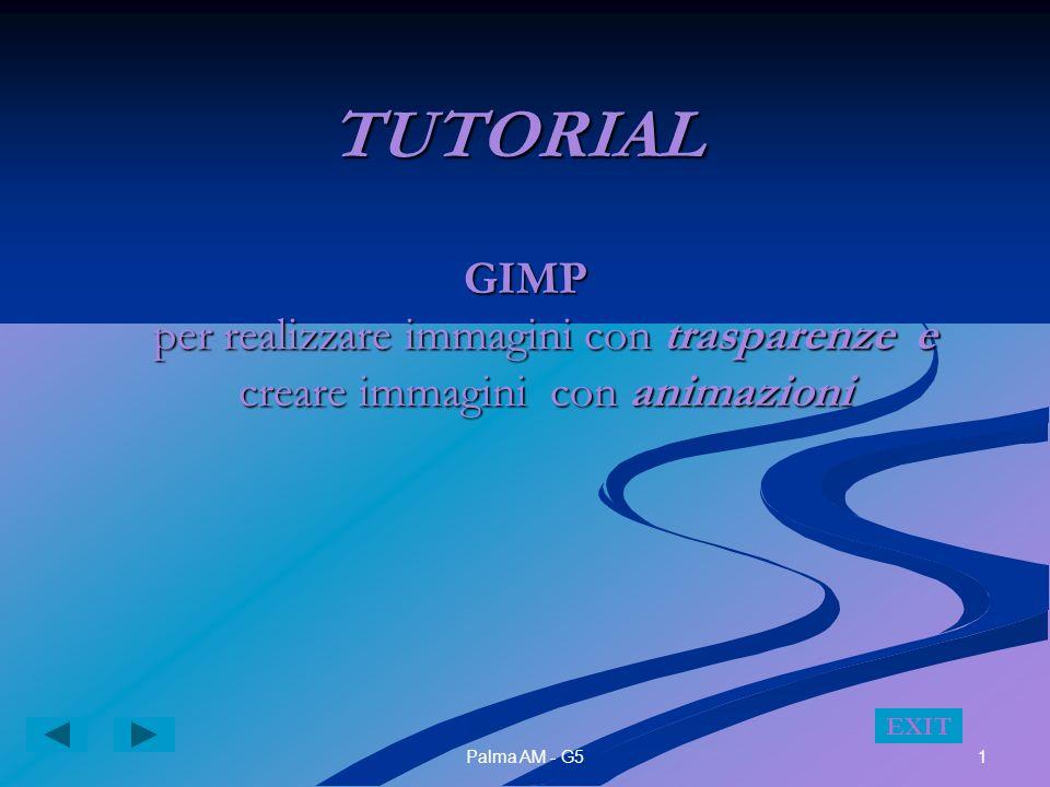 1Palma AM - G5 TUTORIAL GIMP per realizzare immagini con trasparenze e creare immagini con animazioni EXIT