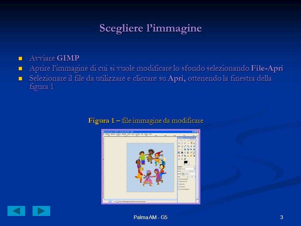3Palma AM - G5 Scegliere limmagine Avviare GIMP Avviare GIMP Aprire limmagine di cui si vuole modificare lo sfondo selezionando File-Apri Aprire limmagine di cui si vuole modificare lo sfondo selezionando File-Apri Selezionare il file da utilizzare e cliccare su Apri, ottenendo la finestra della figura 1 Selezionare il file da utilizzare e cliccare su Apri, ottenendo la finestra della figura 1 Figura 1 – file immagine da modificare Figura 1 – file immagine da modificare