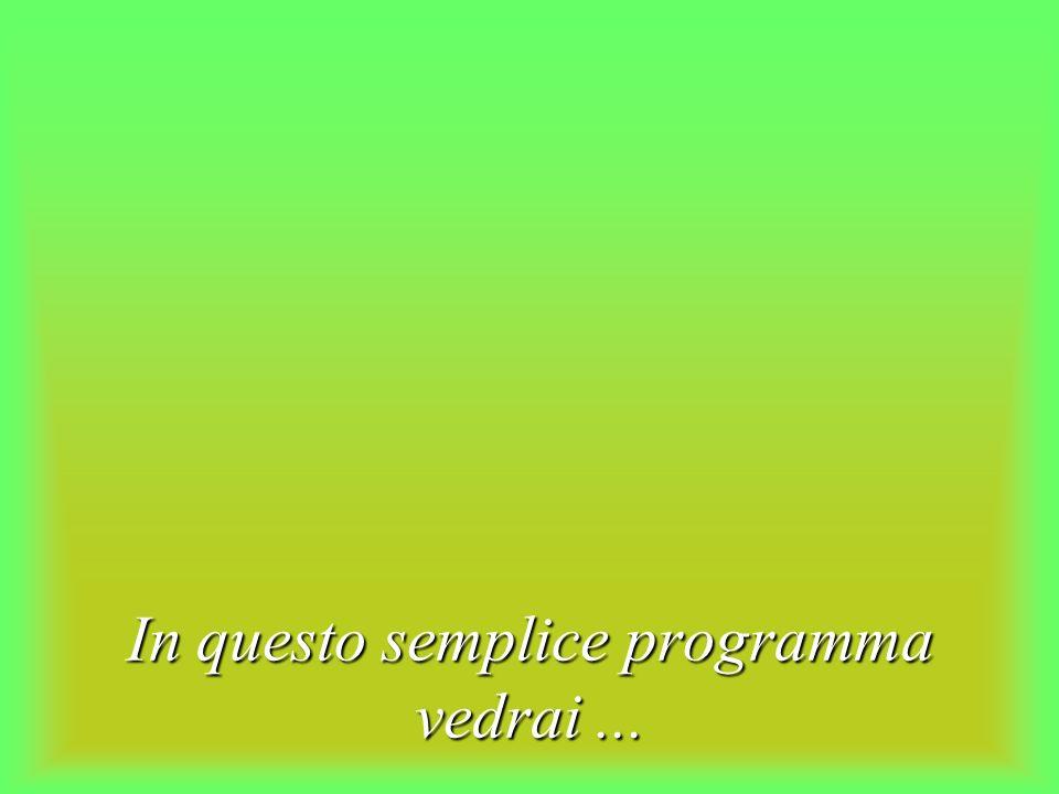 In questo semplice programma vedrai...