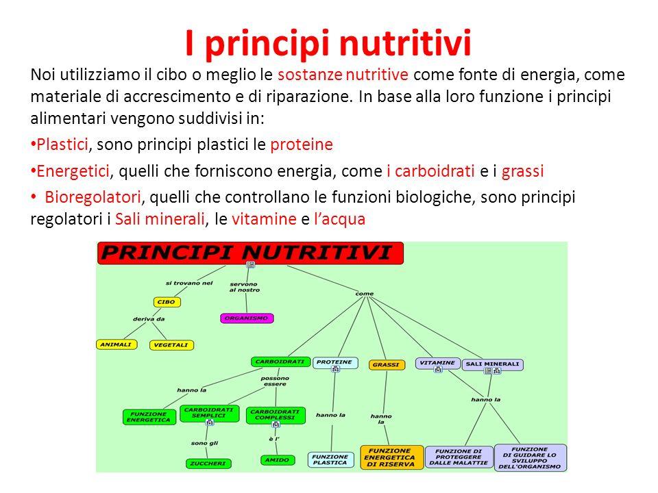 I principi nutritivi Noi utilizziamo il cibo o meglio le sostanze nutritive come fonte di energia, come materiale di accrescimento e di riparazione. I