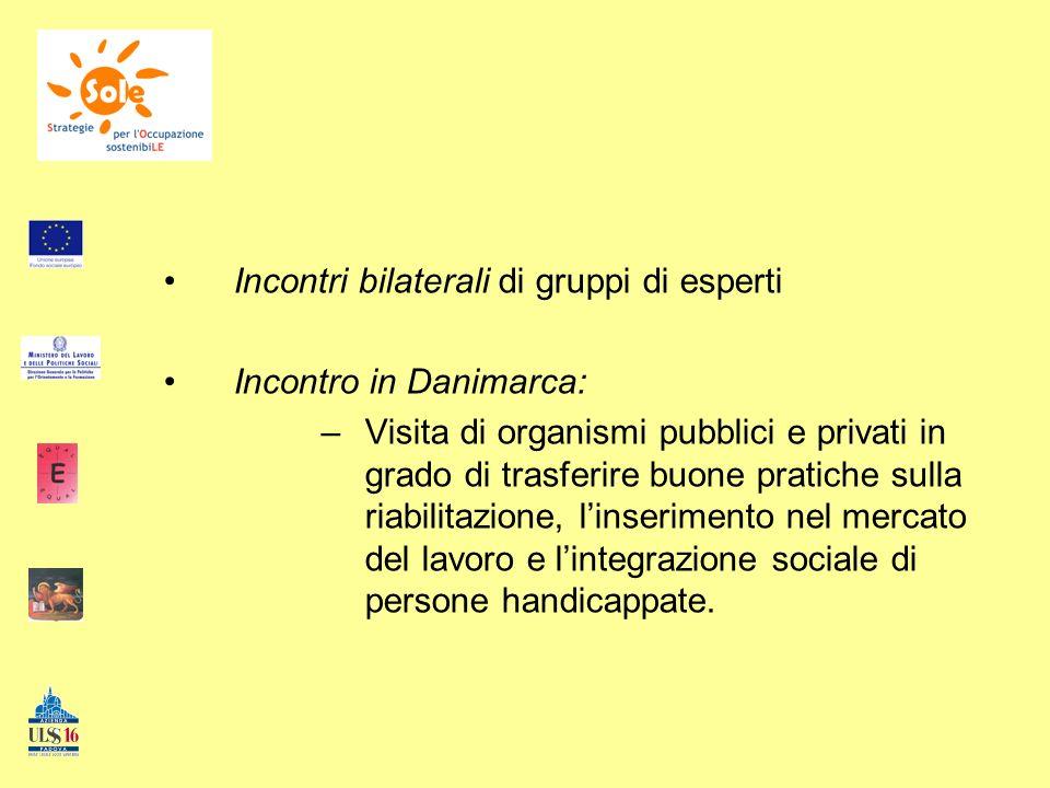 Descrizione delle attività e dei compiti: 2.