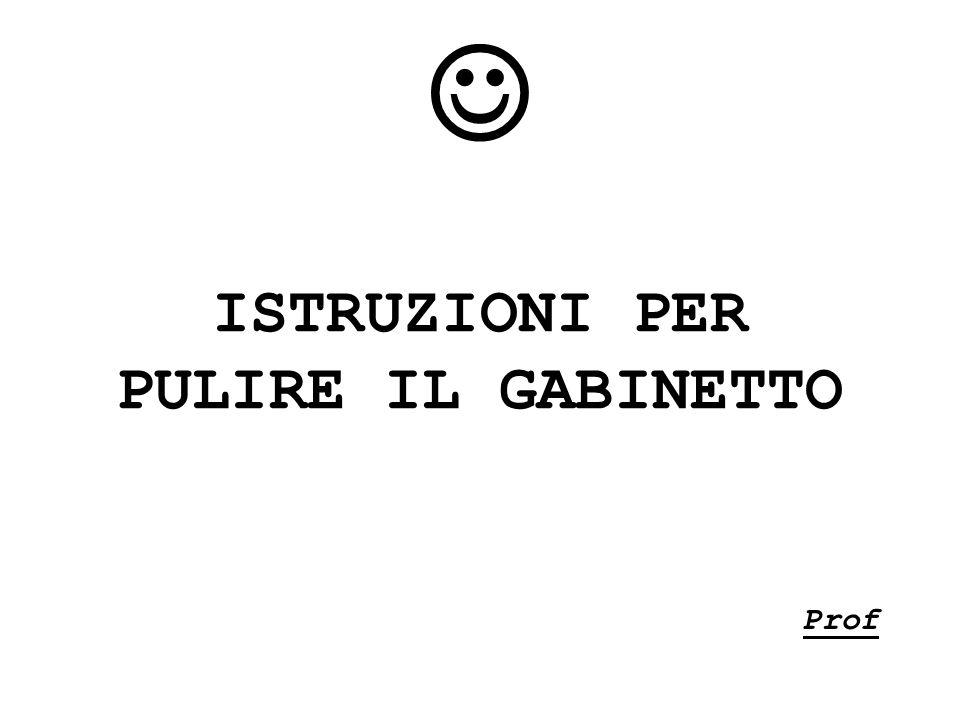 ISTRUZIONI PER PULIRE IL GABINETTO Prof