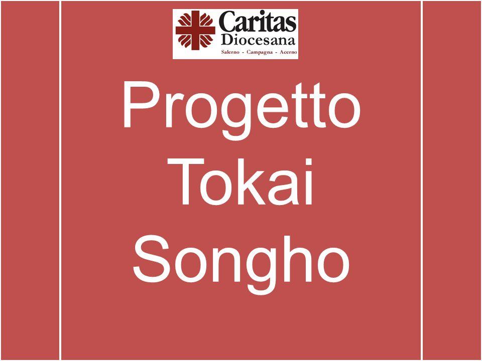 Progetto Tokai Songho