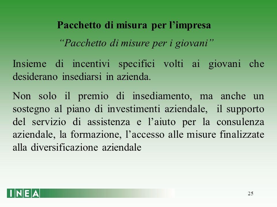 25 Pacchetto di misura per limpresa Pacchetto di misure per i giovani Insieme di incentivi specifici volti ai giovani che desiderano insediarsi in azienda.