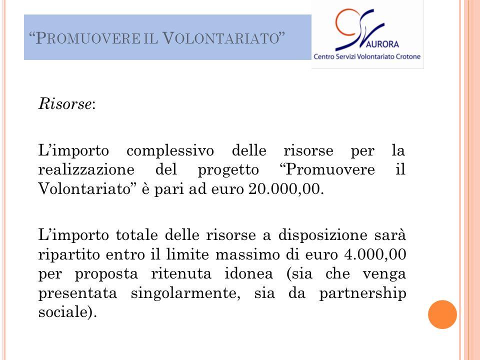 Risorse : Limporto complessivo delle risorse per la realizzazione del progetto Promuovere il Volontariato è pari ad euro 20.000,00.
