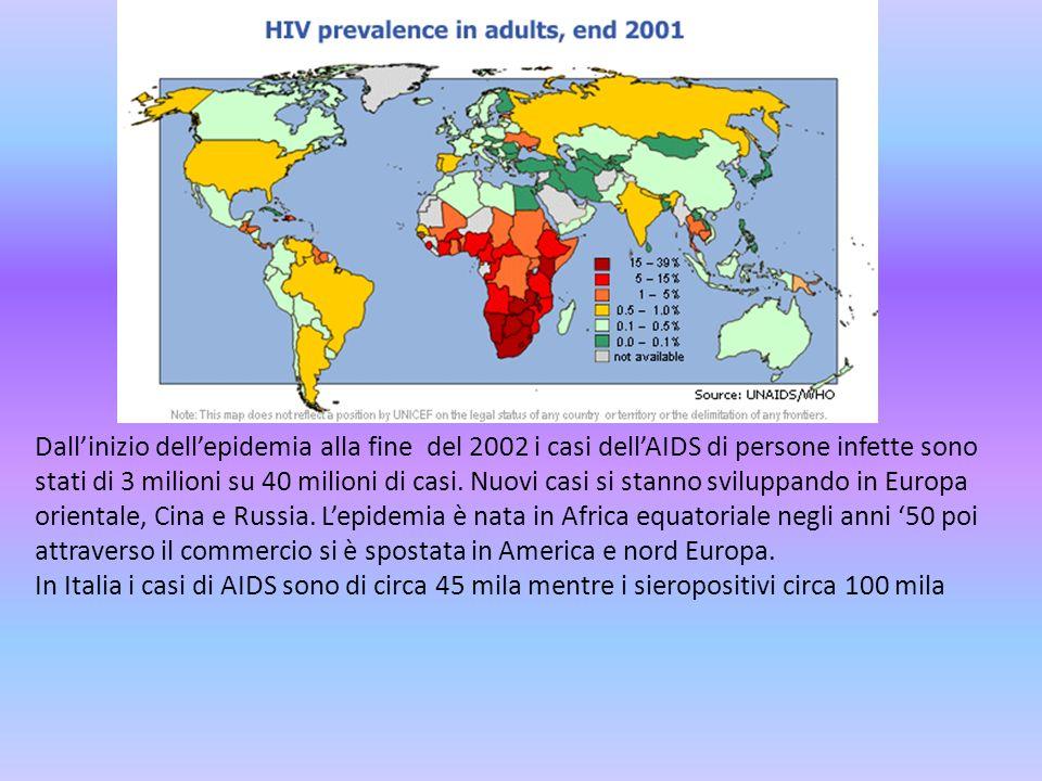 Dallinizio dellepidemia alla fine del 2002 i casi dellAIDS di persone infette sono stati di 3 milioni su 40 milioni di casi. Nuovi casi si stanno svil