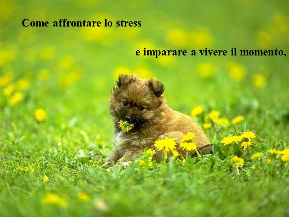 Come affrontare lo stress e imparare a vivere il momento,