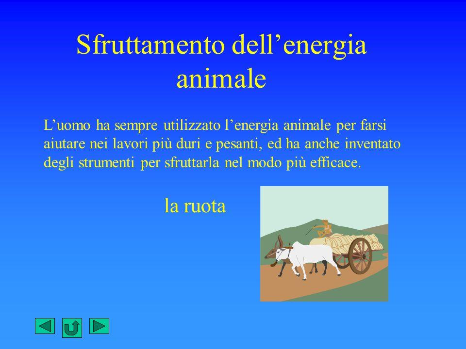 Sfruttamento dellenergia animale Luomo ha sempre utilizzato lenergia animale per farsi aiutare nei lavori più duri e pesanti, ed ha anche inventato de