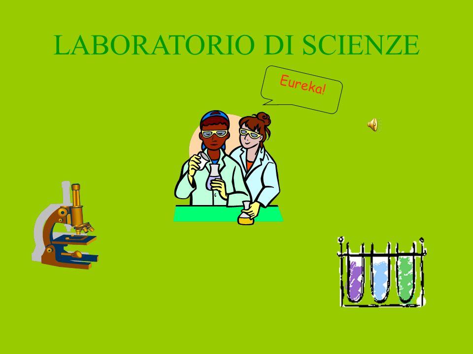 Risorse della scuola Laboratorio informatico Laboratorio di scienze Aula video Aula di educazione artistica Aula di educazione musicale Palestra Bibli