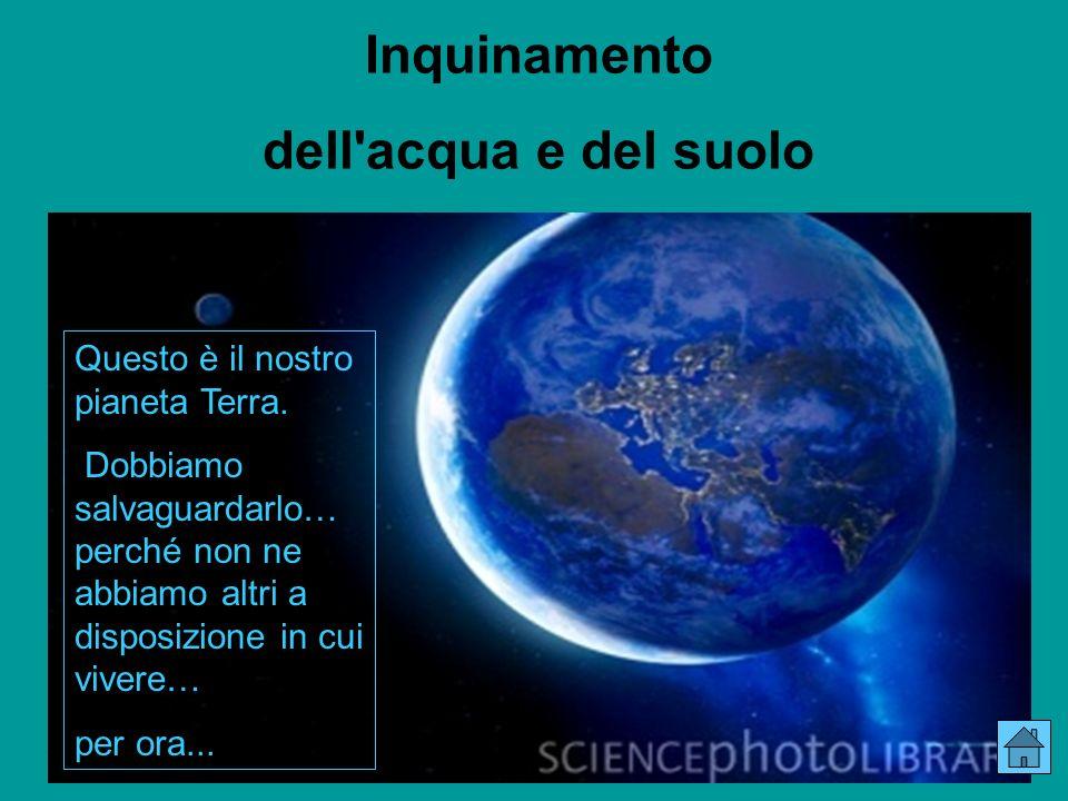 Questo è il nostro pianeta Terra.