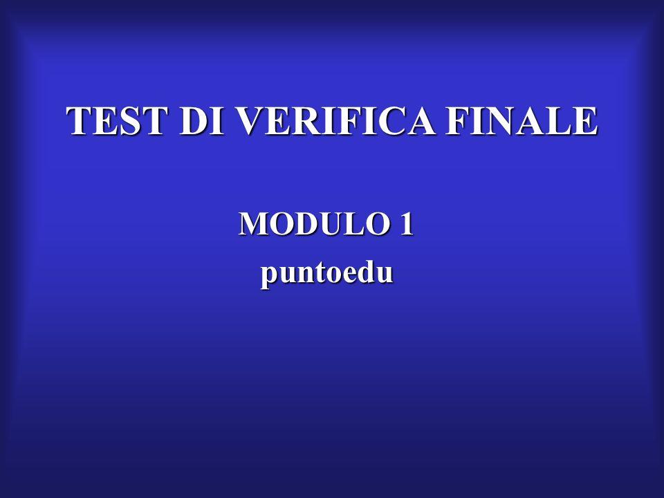 TEST DI VERIFICA FINALE MODULO 1 puntoedu