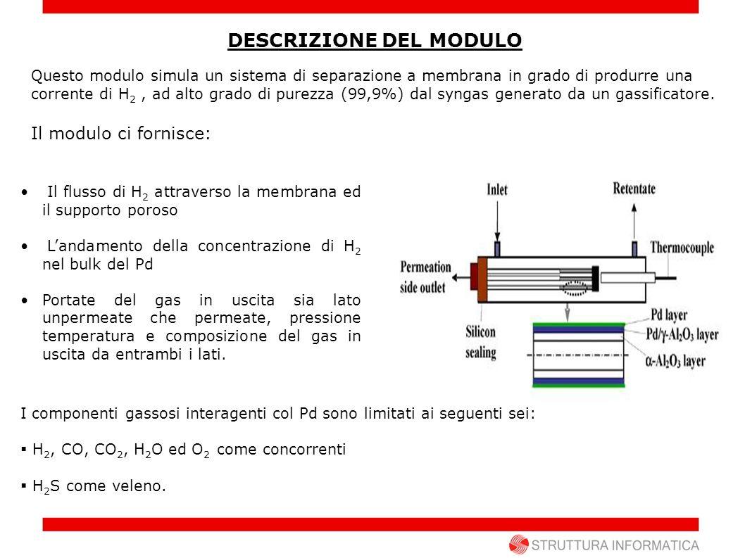 RADIALE Schematizzazione RADIALE in 8 celle: 1.Bulk gas unpermeate; 2.Strato limite laminare 3.Strato superficiale Pd (monolayer lato gas unpermeate); 4.Bulk palladio (3 celle); 5.Strato superficiale Pd (monolayer lato supporto poroso); 6.Supporto poroso; 7.Strato limite laminare; 8.Bulk gas permeate (bassa pressione) Ipotesi principali: Il gas Unpermeate è costituito da 14 componenti : H 2 O, N 2, O 2 H 2, CO 2, CO, HCl, Ar, H 2 S, CH 4, C 2 H 2, NH 3, HCN, COS.