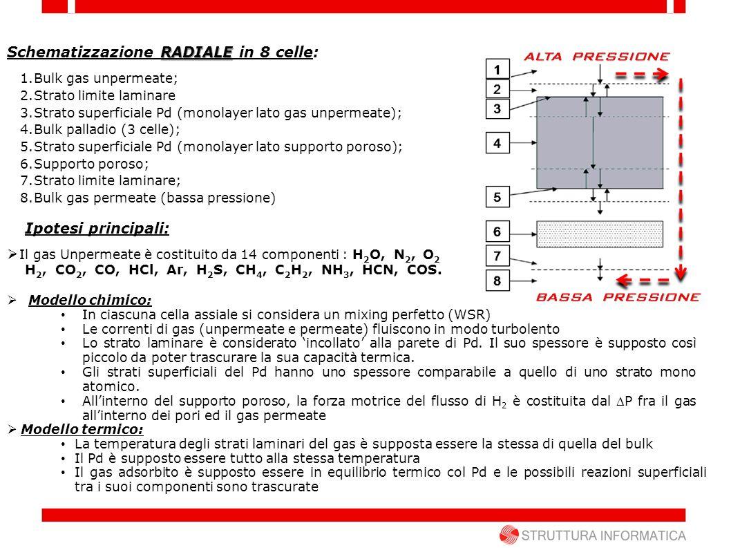 RADIALE Schematizzazione RADIALE in 8 celle: 1.Bulk gas unpermeate; 2.Strato limite laminare 3.Strato superficiale Pd (monolayer lato gas unpermeate);