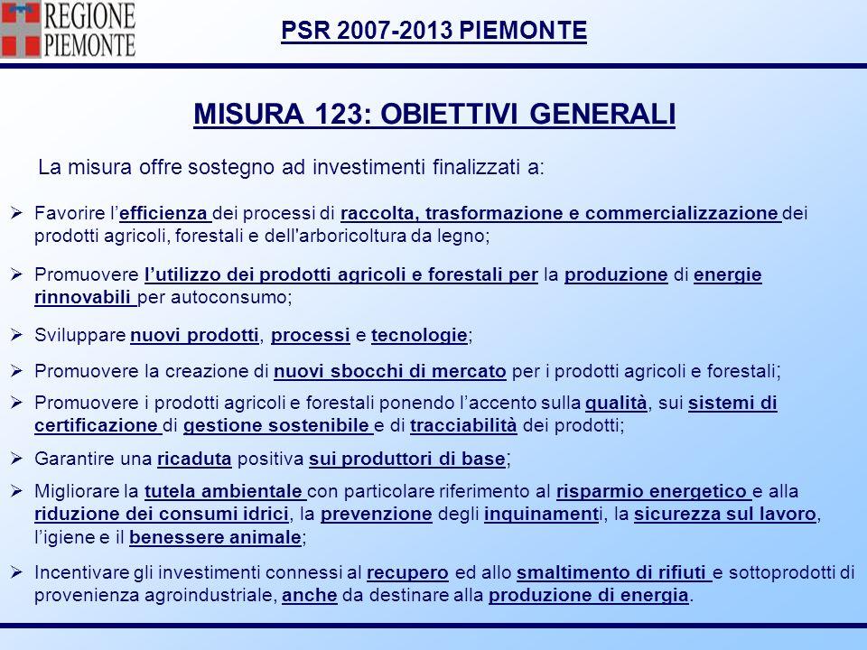 PSR 2007-2013 PIEMONTE MISURA 123: OBIETTIVI GENERALI Favorire lefficienza dei processi di raccolta, trasformazione e commercializzazione dei prodotti