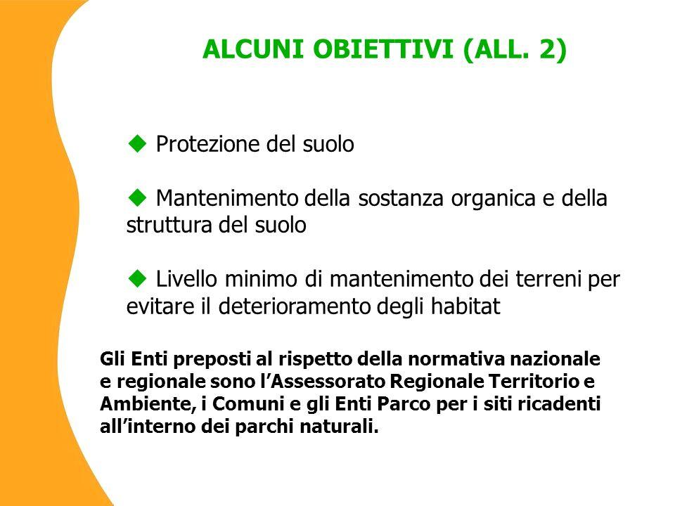 ALCUNI OBIETTIVI (ALL.