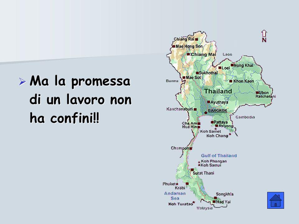 Ma la promessa di un lavoro non ha confini!! Ma la promessa di un lavoro non ha confini!!