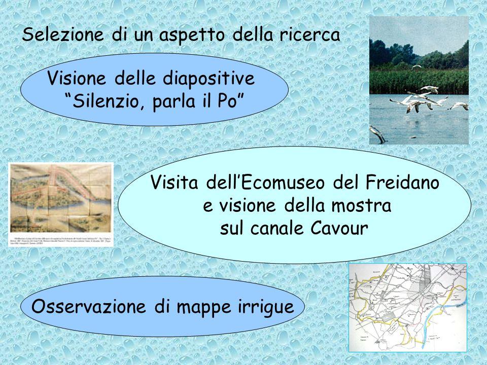 Selezione di un aspetto della ricerca Visione delle diapositive Silenzio, parla il Po Visita dellEcomuseo del Freidano e visione della mostra sul canale Cavour Osservazione di mappe irrigue