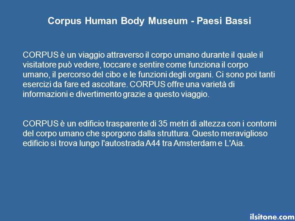 Corpus Human Body Museum - Paesi Bassi CORPUS è un viaggio attraverso il corpo umano durante il quale il visitatore può vedere, toccare e sentire come