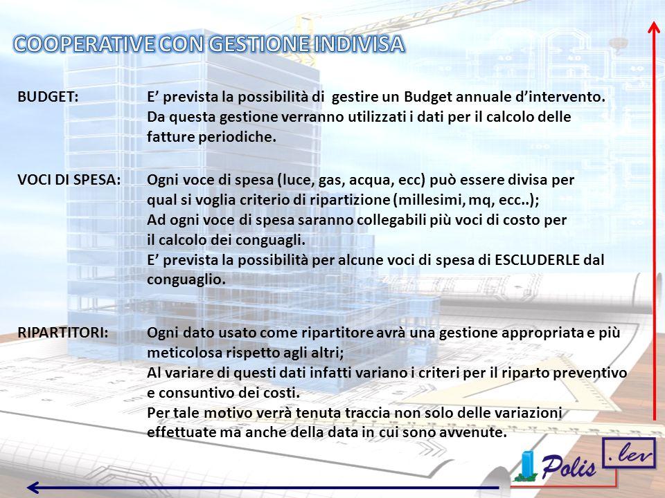 BUDGET:E prevista la possibilità di gestire un Budget annuale dintervento.