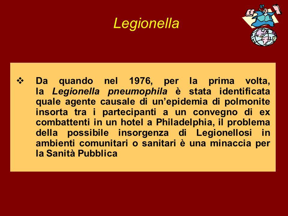 Legionella Da quando nel 1976, per la prima volta, la Legionella pneumophila è stata identificata quale agente causale di unepidemia di polmonite inso