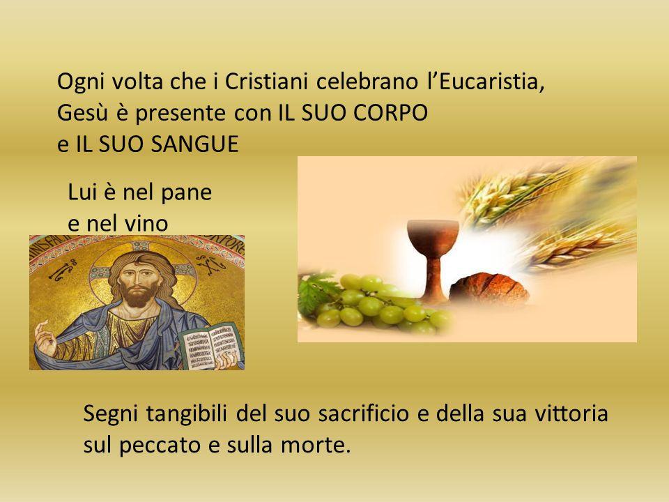 Ogni volta che i Cristiani celebrano lEucaristia, Gesù è presente con IL SUO CORPO e IL SUO SANGUE Lui è nel pane e nel vino Segni tangibili del suo s