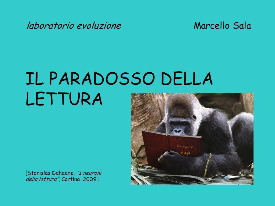 laboratorio evoluzione Marcello Sala IL PARADOSSO DELLA LETTURA [Stanislas Dehaene, I neuroni della lettura, Cortina 2009]