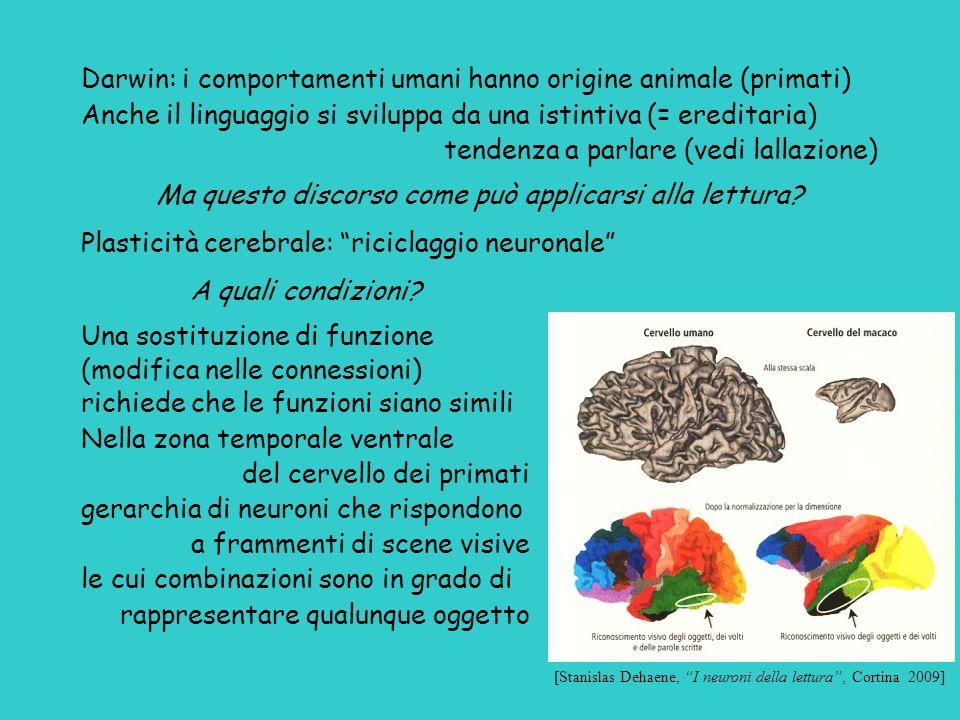 Darwin: i comportamenti umani hanno origine animale (primati) Anche il linguaggio si sviluppa da una istintiva (= ereditaria) tendenza a parlare (vedi