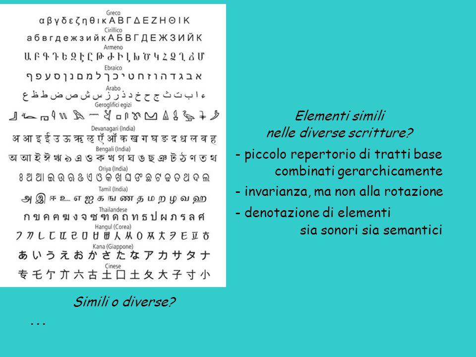 Elementi simili nelle diverse scritture? - piccolo repertorio di tratti base combinati gerarchicamente - invarianza, ma non alla rotazione - denotazio