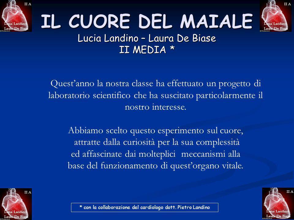 IL CUORE DEL MAIALE Lucia Landino – Laura De Biase II MEDIA * Lucia Landino Laura De Biase II A Lucia Landino Laura De Biase II A Lucia Landino Laura