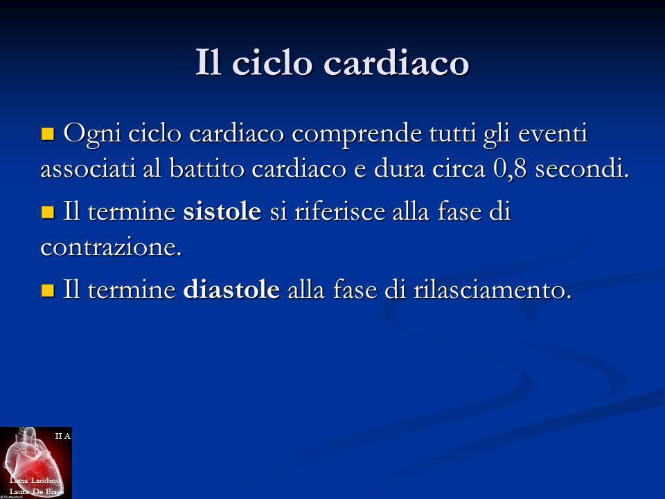 Il ciclo cardiaco Ogni ciclo cardiaco comprende tutti gli eventi associati al battito cardiaco e dura circa 0,8 secondi. Ogni ciclo cardiaco comprende