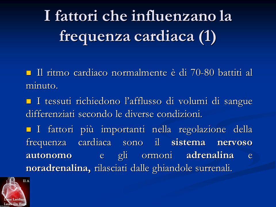 I fattori che influenzano la frequenza cardiaca (1) Il ritmo cardiaco normalmente è di 70-80 battiti al minuto. Il ritmo cardiaco normalmente è di 70-