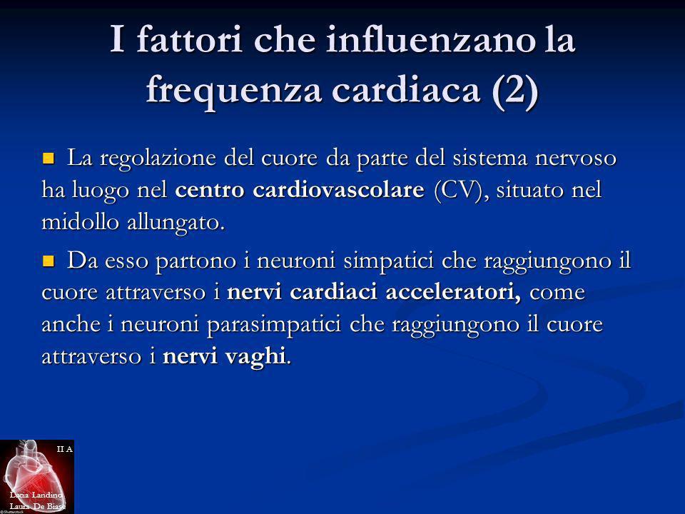 I fattori che influenzano la frequenza cardiaca (2) La regolazione del cuore da parte del sistema nervoso ha luogo nel centro cardiovascolare (CV), si