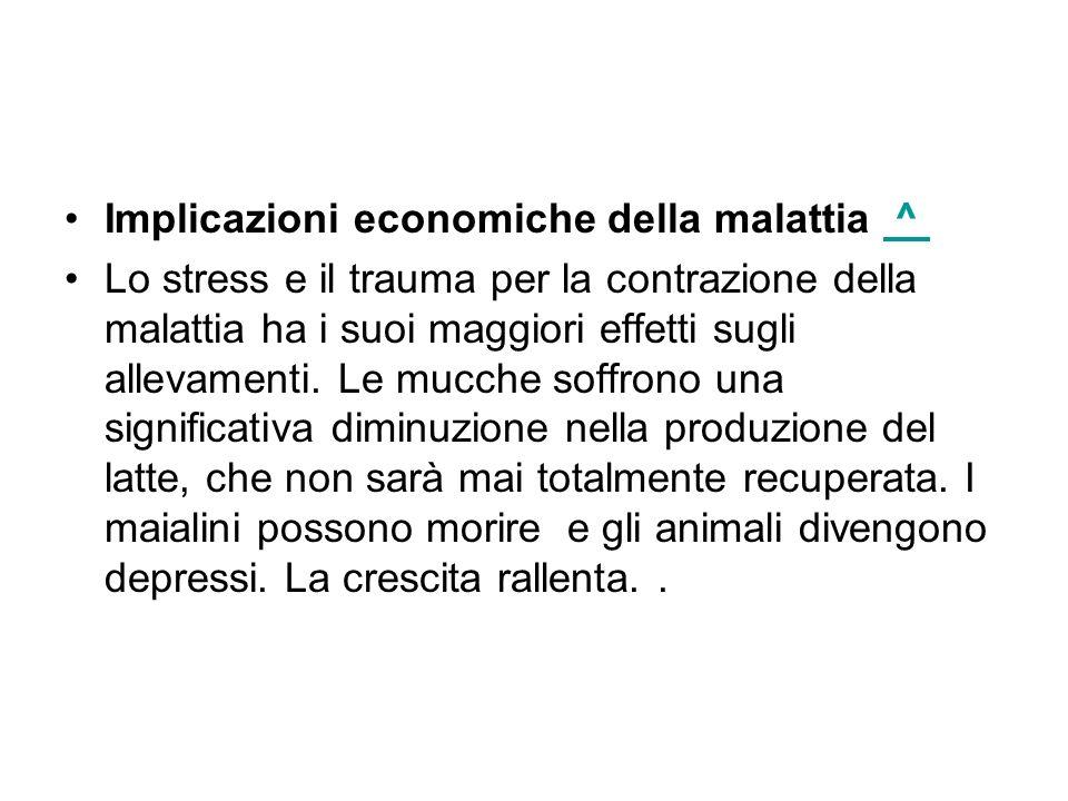 Implicazioni economiche della malattia ^ ^ Lo stress e il trauma per la contrazione della malattia ha i suoi maggiori effetti sugli allevamenti. Le mu