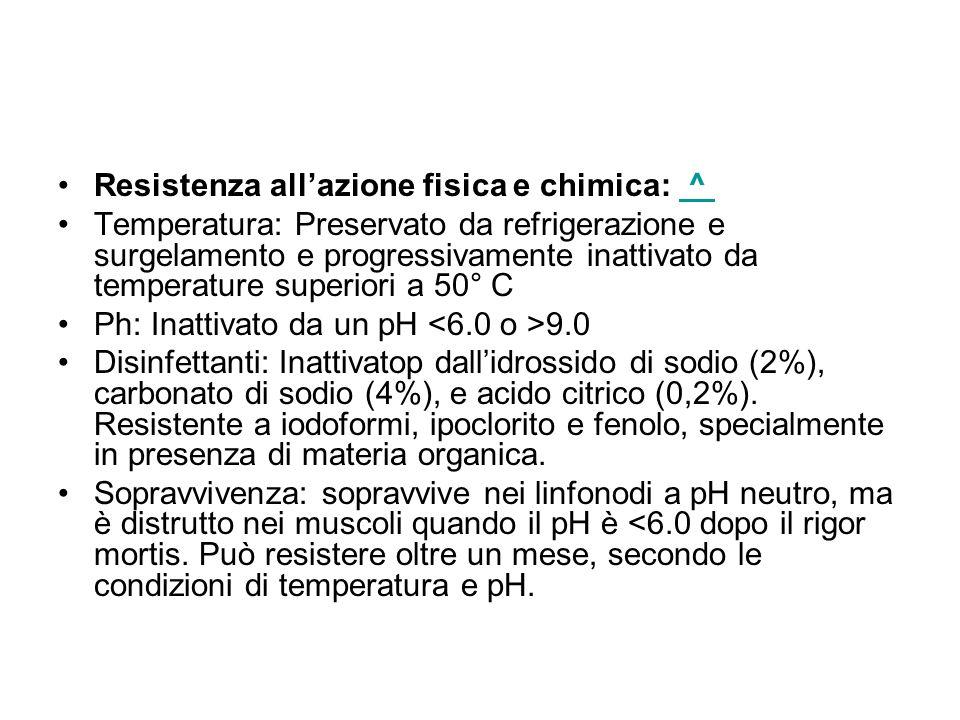 Resistenza allazione fisica e chimica: ^ ^ Temperatura: Preservato da refrigerazione e surgelamento e progressivamente inattivato da temperature superiori a 50° C Ph: Inattivato da un pH 9.0 Disinfettanti: Inattivatop dallidrossido di sodio (2%), carbonato di sodio (4%), e acido citrico (0,2%).
