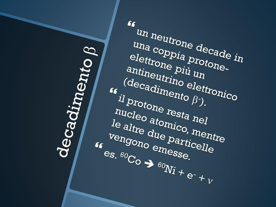 un neutrone decade in una coppia protone- elettrone più un antineutrino elettronico (decadimento β - ).