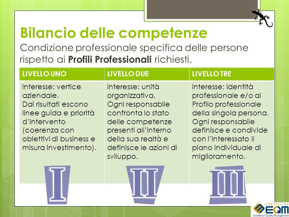Bilancio delle competenze Condizione professionale specifica delle persone rispetto ai Profili Professionali richiesti. LIVELLO UNOLIVELLO DUELIVELLO