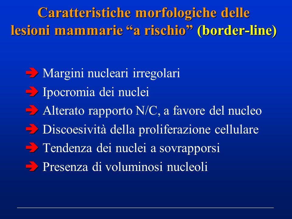 Caratteristiche morfologiche delle lesioni mammarie a rischio (border-line) Margini nucleari irregolari Ipocromia dei nuclei Alterato rapporto N/C, a