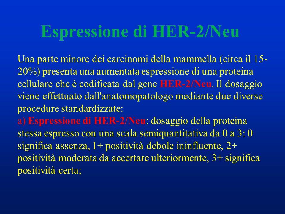 Espressione di HER-2/Neu Una parte minore dei carcinomi della mammella (circa il 15- 20%) presenta una aumentata espressione di una proteina cellulare