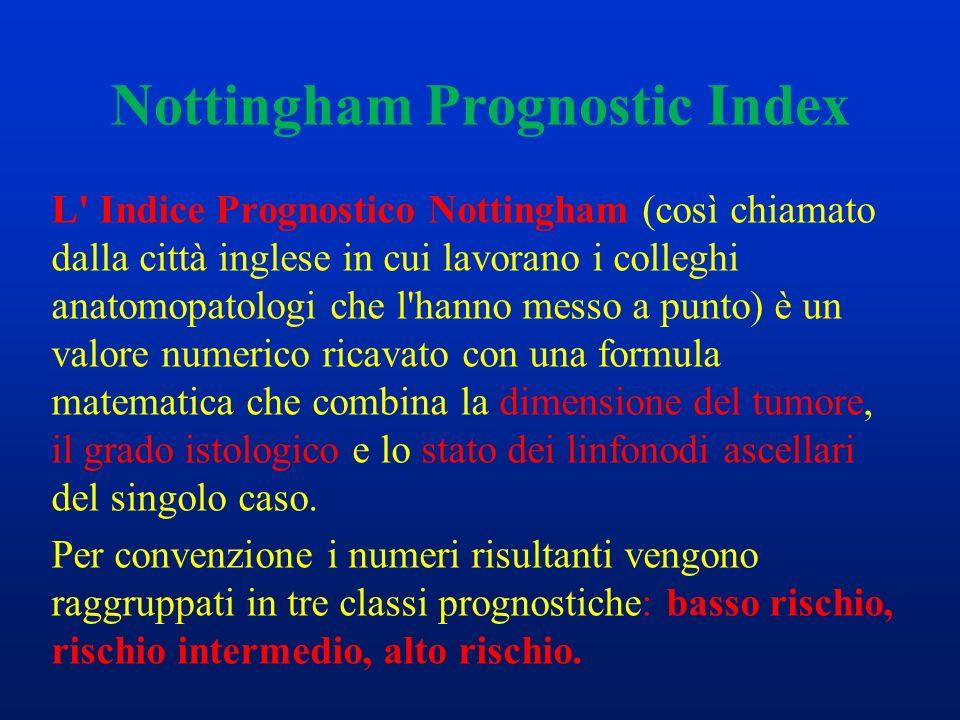 Nottingham Prognostic Index L' Indice Prognostico Nottingham (così chiamato dalla città inglese in cui lavorano i colleghi anatomopatologi che l'hanno