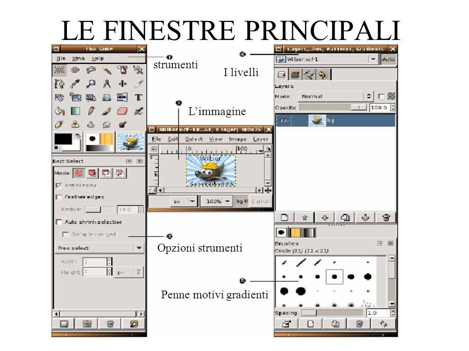 www.giocoscuola.it LE FINESTRE PRINCIPALI Opzioni strumenti strumenti Limmagine I livelli Penne motivi gradienti