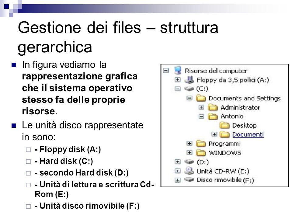 Gestione dei files – struttura gerarchica In figura vediamo la rappresentazione grafica che il sistema operativo stesso fa delle proprie risorse. Le u