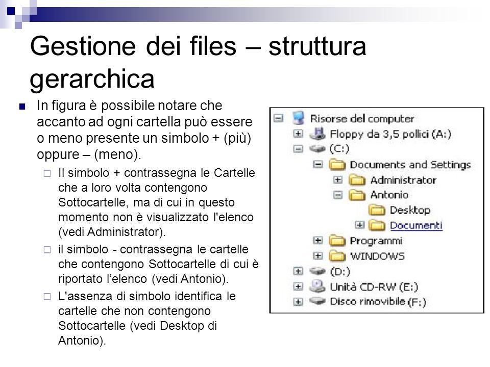 Gestione dei files – struttura gerarchica In figura è possibile notare che accanto ad ogni cartella può essere o meno presente un simbolo + (più) oppu