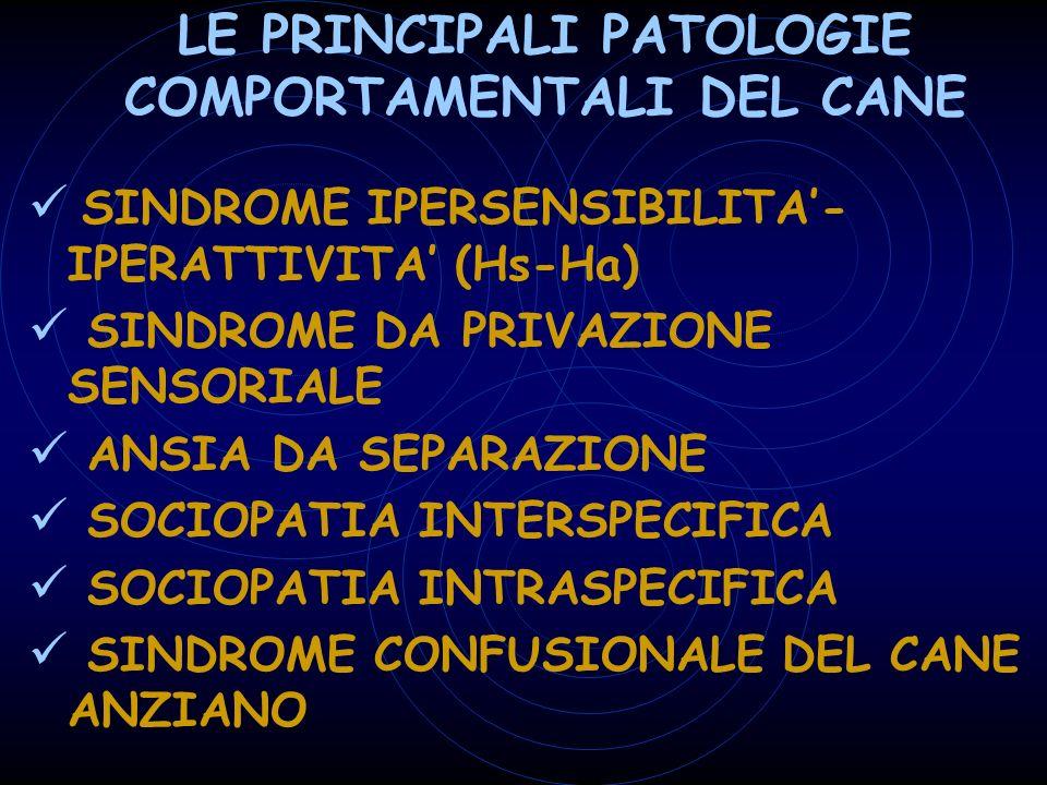LE PRINCIPALI PATOLOGIE COMPORTAMENTALI DEL CANE SINDROME IPERSENSIBILITA- IPERATTIVITA (Hs-Ha) SINDROME DA PRIVAZIONE SENSORIALE ANSIA DA SEPARAZIONE SOCIOPATIA INTERSPECIFICA SOCIOPATIA INTRASPECIFICA SINDROME CONFUSIONALE DEL CANE ANZIANO