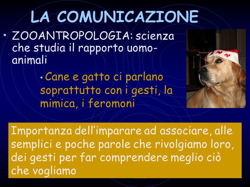 LA COMUNICAZIONE ZOOANTROPOLOGIA: scienza che studia il rapporto uomo- animali Cane e gatto ci parlano soprattutto con i gesti, la mimica, i feromoni Importanza dellimparare ad associare, alle semplici e poche parole che rivolgiamo loro, dei gesti per far comprendere meglio ciò che vogliamo