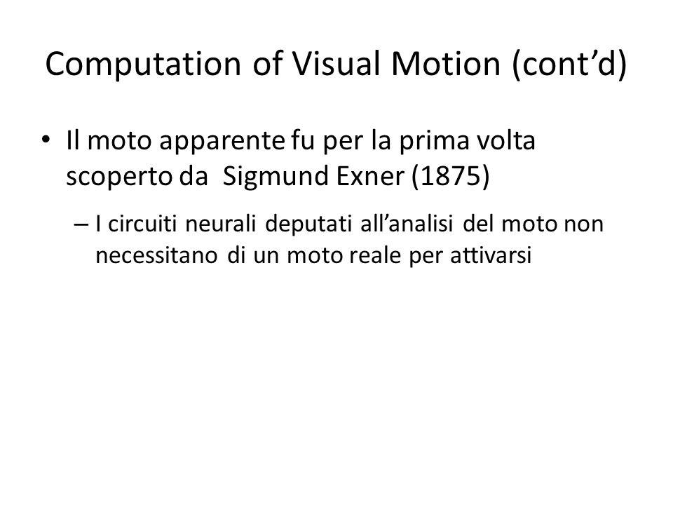 Computation of Visual Motion (contd) Il moto apparente fu per la prima volta scoperto da Sigmund Exner (1875) – I circuiti neurali deputati allanalisi